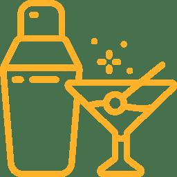 cocktail-shaker op boottocht Den Haag